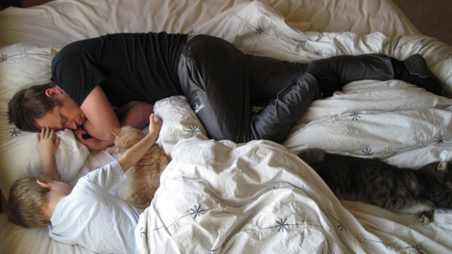 Ralph, Sick; Nels, Nursing  (... Cats, Sleeping)
